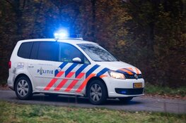 Getuigenoproep mishandeling schaap Delftweg Rijswijk